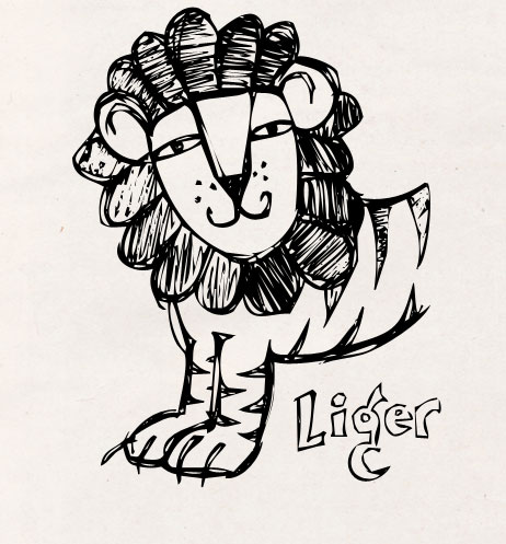 Ligers Are Real